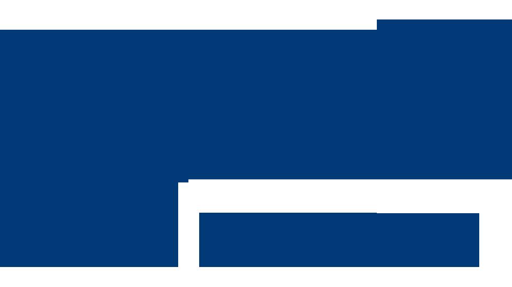 Sundsvalls DFF emblem