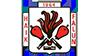 Hälsinggårdens AIK Fotboll  emblem