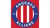 Angered BK (D3H) emblem
