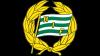 Hammarby IF FF Futsal emblem
